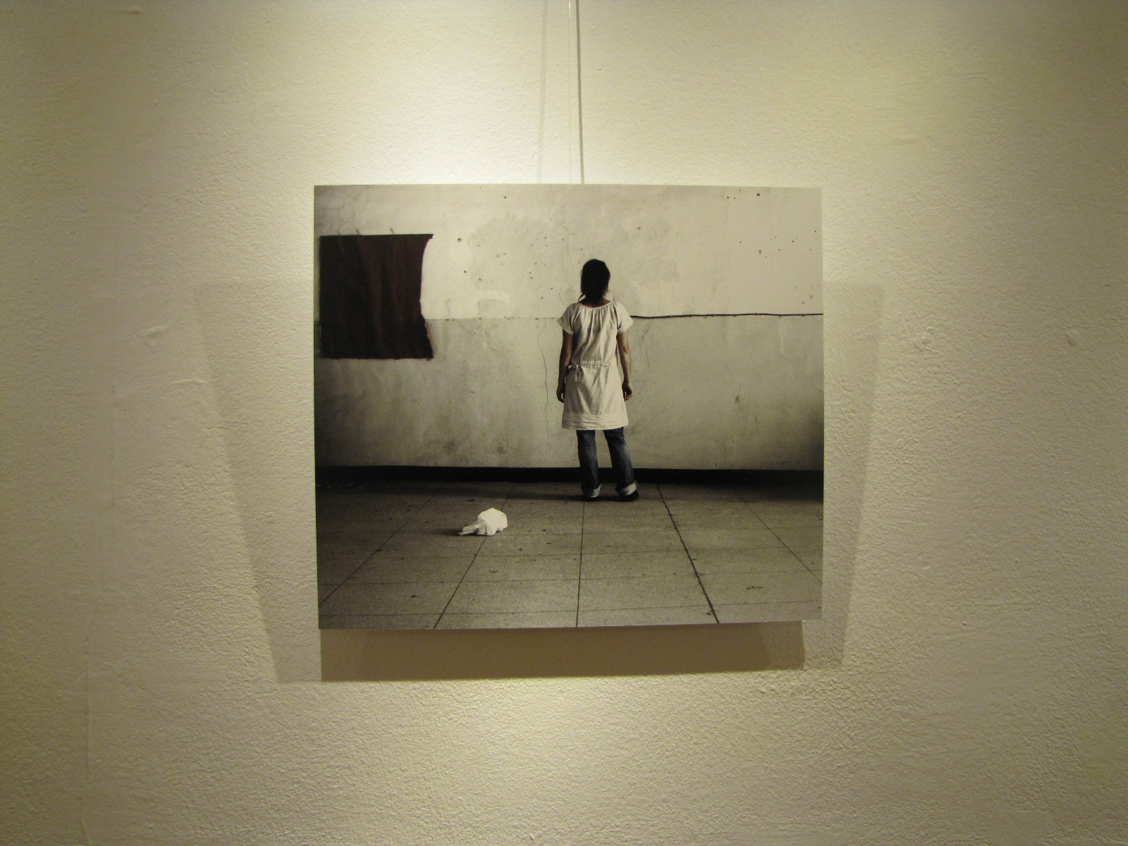Exhibitions donna ducarme